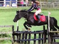 Fantastic Jumping Pony/PC Pony