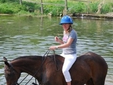 15hh ex polo pony for loan/ share