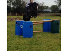 Talented, Fun well used 12. 2hh pony