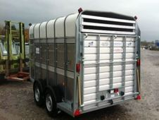 Wanted: Ifor Williams TA510 Stock trailer
