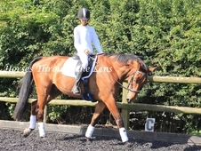**STUNNING 17. 2HH FOR PART/FULL LOAN***