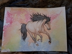 Have your own horse or pony in watercolour!