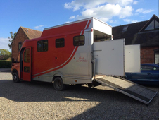 Iveco Daily 6.5t Horsebox