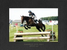 Genuine smart eventer