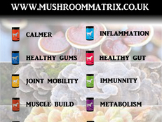 Mushroom Matrix 100% Organic Supplements