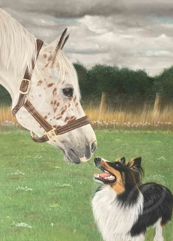 Pet and Equine portraits