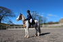 Equestrian Centres for sale in United Kingdom