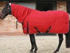 Heavy weight Red stable rug