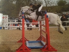 13. 2 showjumper for loan