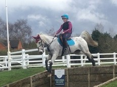 Pony club / riding club alrounder