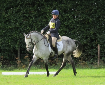 DEFINITE FEI POTENTIAL EVENT / COMPETITION PONY