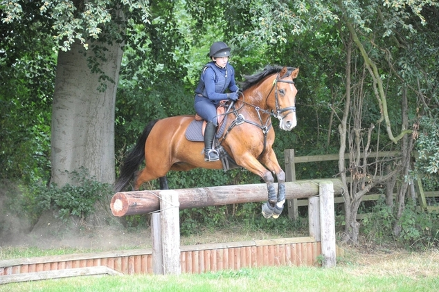 15.1hh Event/Showjump/Pony Club Mare For Sale