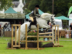 TALENTED TOP COMPETITION PONY