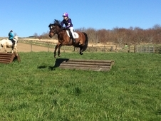 Fun 2nd Pony who loves to jump!