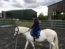 11. 2hh Welsh A lead rein and first ridden