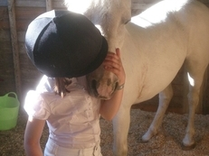 Ideal, very safe, first pony for a small child