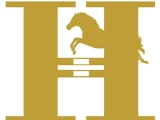 Horse news/magazine website