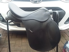 BLACK WINTEC GP FOR SALE