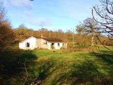 35 Acre Farm for Sale in Blackdown Hills AONB as a Whole or in Lots