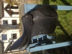 "17.6"" Bates Caprilli GP saddle"
