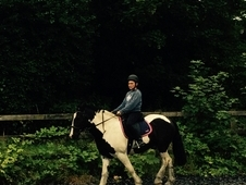 14. 2H Cob Sharer Wanted Bookham, Happy Hacker, schooling