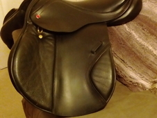 Albion legend k2 jumping saddle