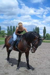 Experienced horse rider available
