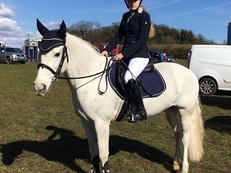 *AMAZING 14.1HH ALLROUNDER/COMPETITION PONY FOR SALE*