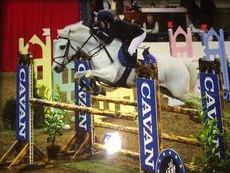 13.2hh Grade A, Jumping Machine