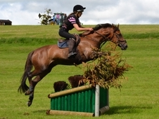 Fabulous Pony Club Show Jumping Eventing