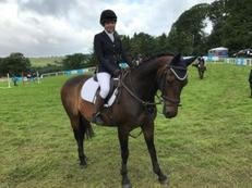 Exceptionally talented all rounder and Grade B British Showjumper