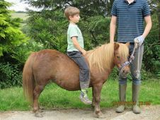 Children's first Pony