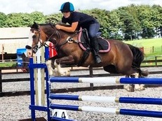 138 Jumping Pony full of scope!