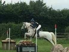Super riding/pony club allrounder