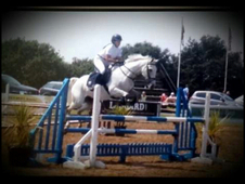 Quirky Showjumper bsja 124 pts