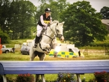 Fabulous jumping mare