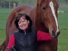 Freelance riding coach and behaviourist