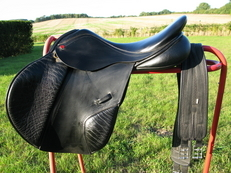 Albion Legend  Saddle