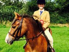 Brilliant pony club allrounder
