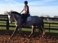 15. 3hh Confidence Giving Geding