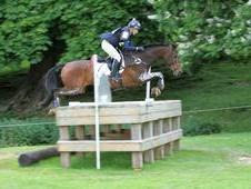 Experienced rider available for schooling