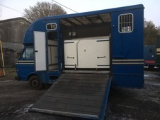 LT50 Volkswagen 5 Tonne Ladies Horse Box