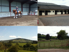 Livery, Tuition Available, Indoor School for Hire