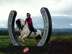 ****Sold****PC Pony all rounder & Driving pony