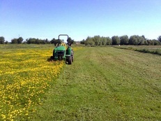 Paddock spraying to optimise grazing
