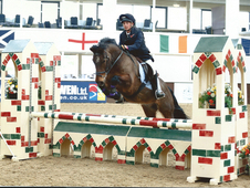 Competition/allrounder/lovely natured pony