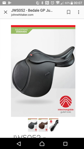 John Whitaker GP saddle.