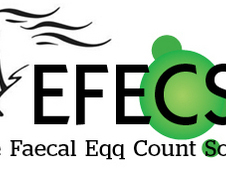 Equine Faecal Egg Count Solutions