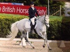 Top Class 14. 2hh Connemara x TB Competition Pony