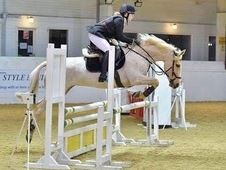 Sold-subject to collection Stunning Palomino competition mare